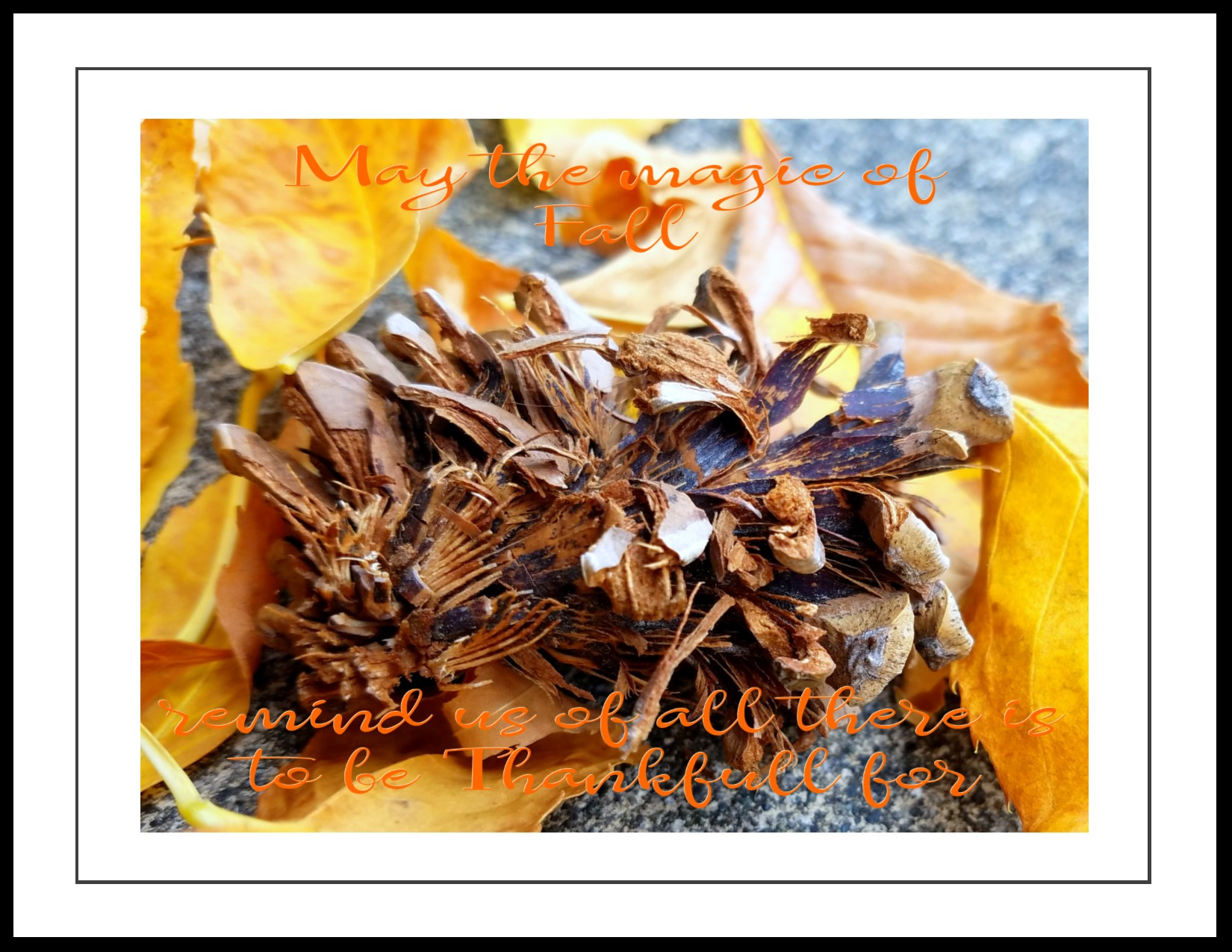 Magic Of Fall Instant Download