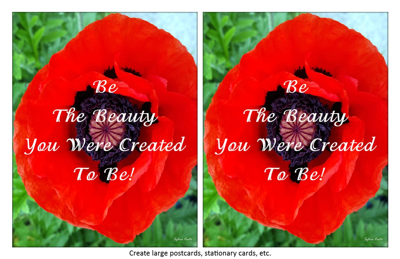 Be The Beauty Instant Download